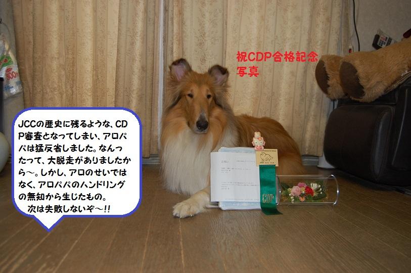 cdp02.jpg