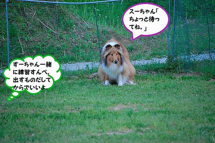 renkyu04.jpg