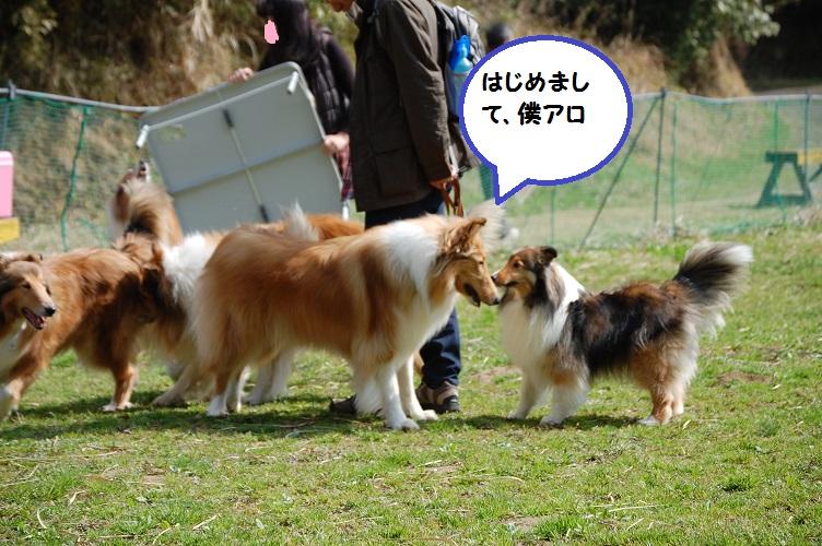 suiran03221.jpg