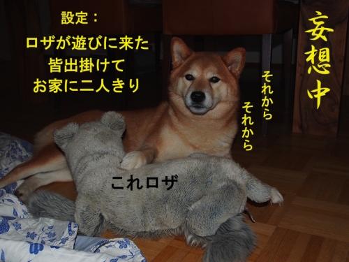 妄想中 copy