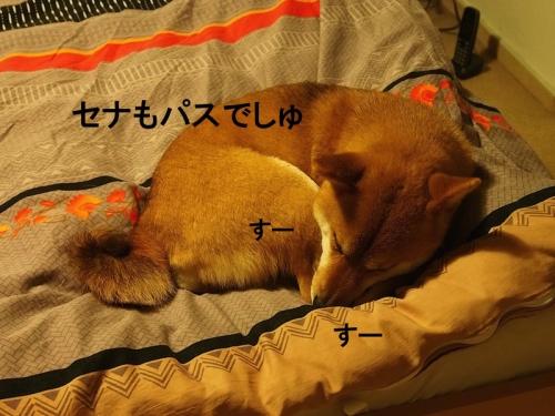 ぱすcopy