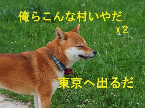俺東京さいぐだ copy
