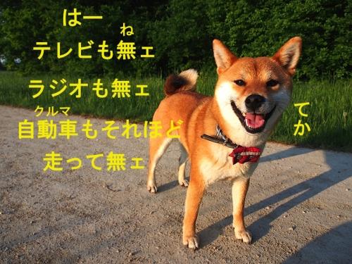 おらさ東京いぐだ