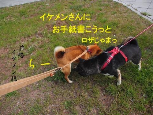 前略イケメン様copy