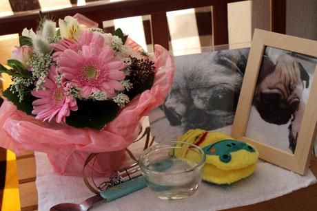 百箇日のお花