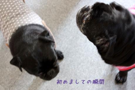 春吉と初めまして~!