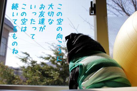お友達に(@^^)/~~~