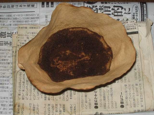 藤田珈琲 オリジナルブレンドコーヒー 深煎り ドリップ後に数日間放置して乾燥した Melitta エコフィルターペーパー ブラウン Eco PA 1×4G、乾燥したコーヒーかす移し替え用に使用