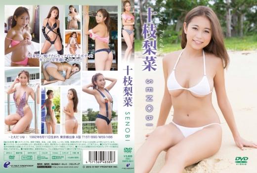 十枝梨菜/SENOBI