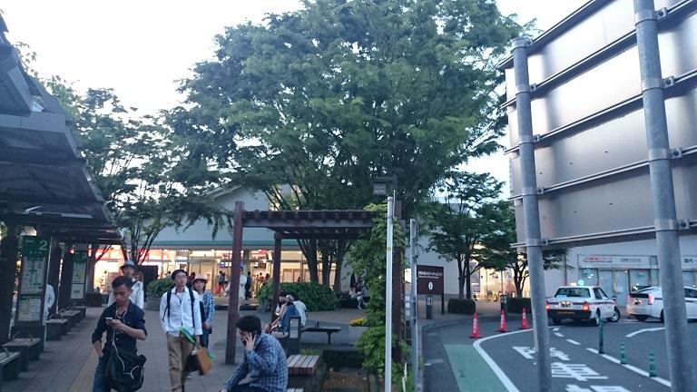 miura18.jpg