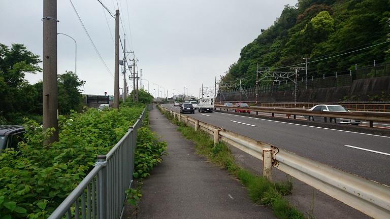 miura31.jpg