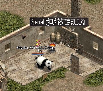 0202パンダ
