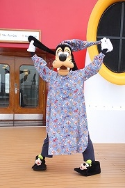 DCL20129 619