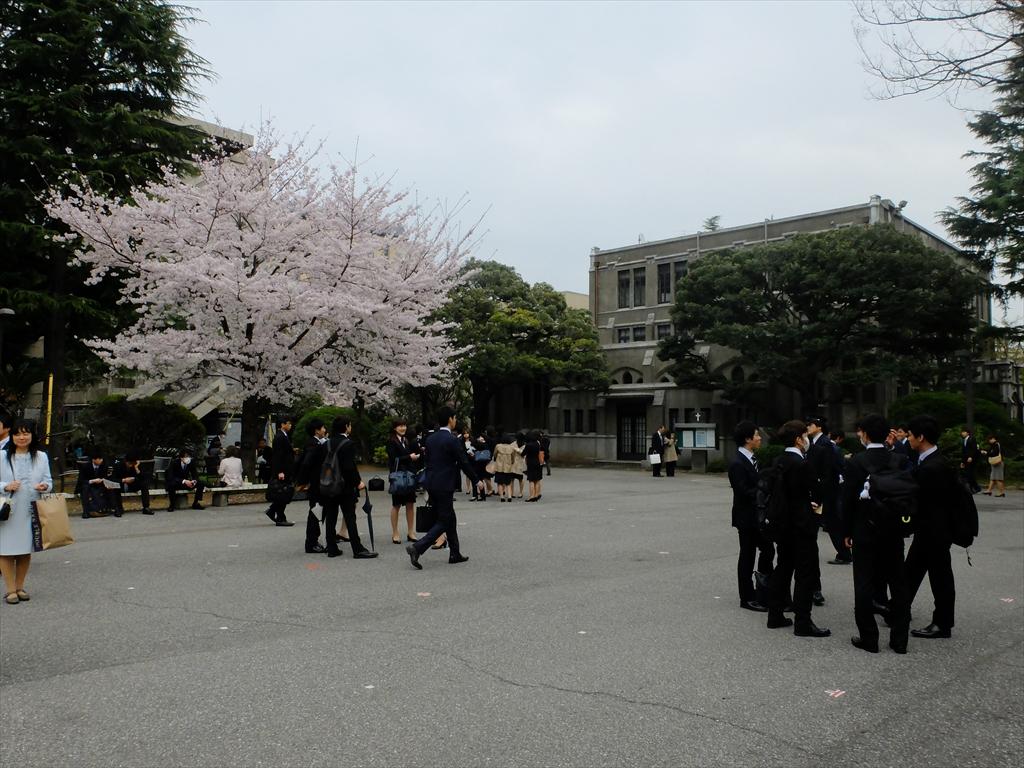 青山学院大学キャンパスの様子_10