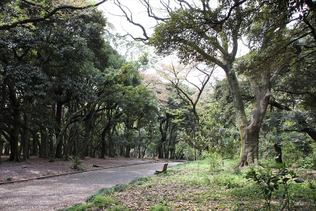 日本庭園に向かう_3