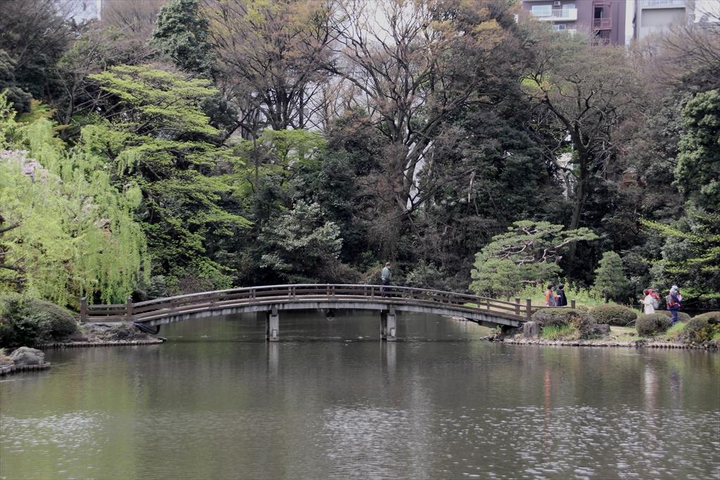 上の池_2