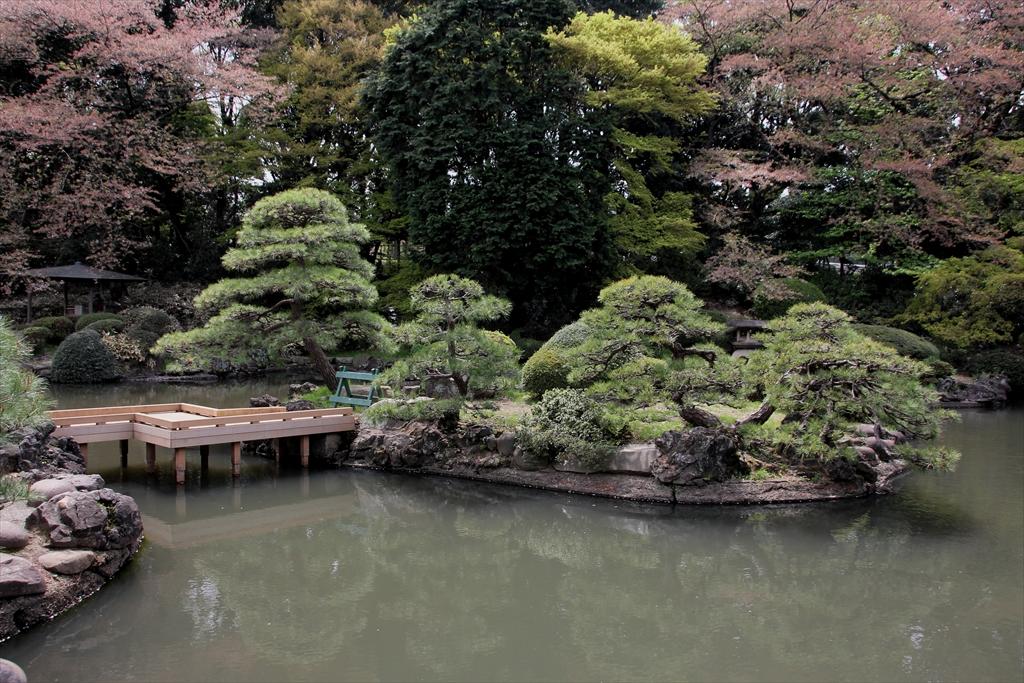 やはり日本庭園だから、池をしっかり見なくちゃ_1