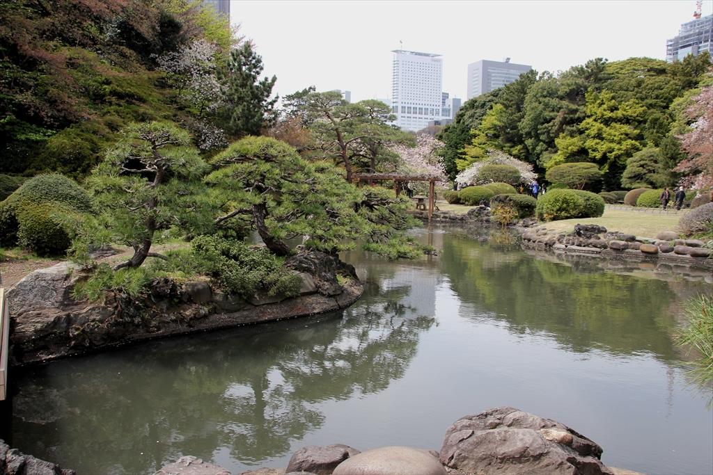 やはり日本庭園だから、池をしっかり見なくちゃ_2