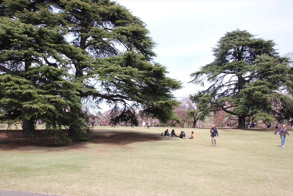 イギリス風景式庭園
