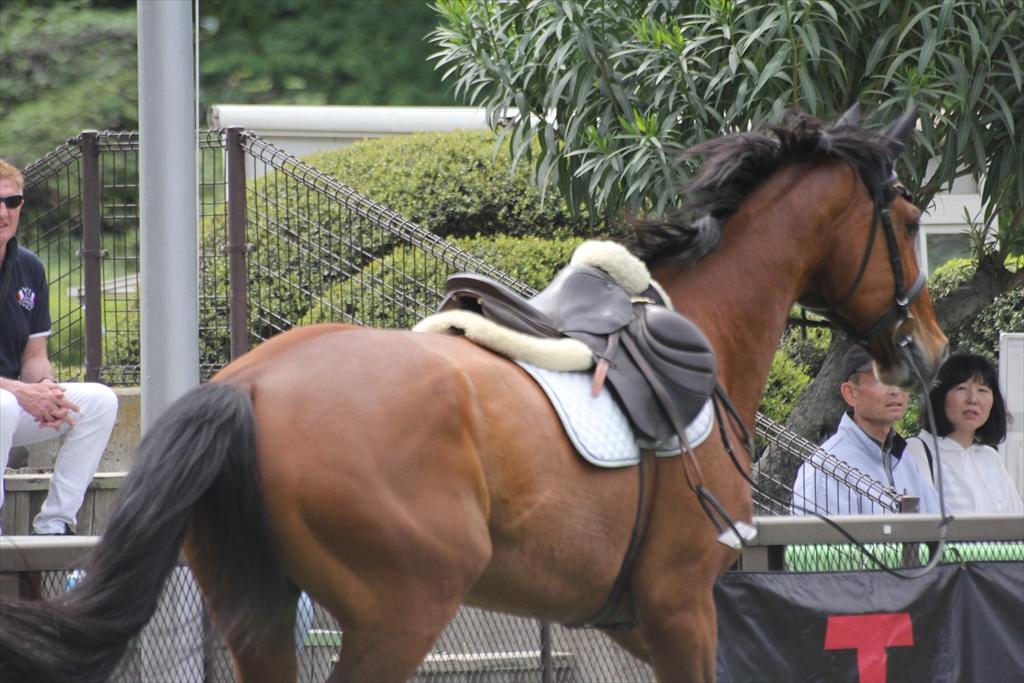 落馬シーン_12