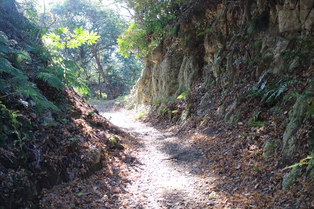 少し岩盤が露出したような道を通る_2