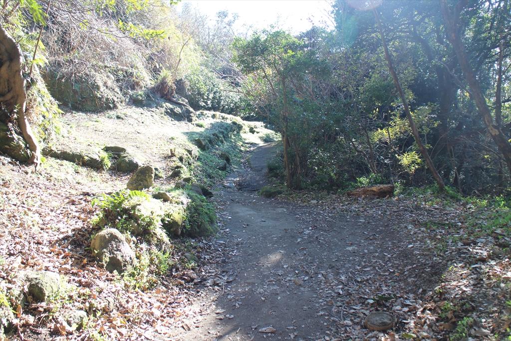 少し岩盤が露出したような道を通る_3