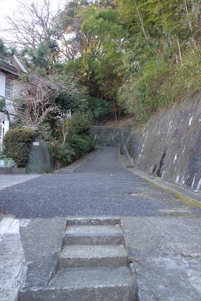 暫くは、整備された歩きやすい道が続く_1