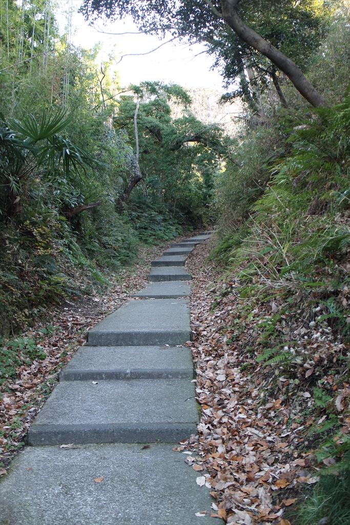 暫くは、整備された歩きやすい道が続く_3