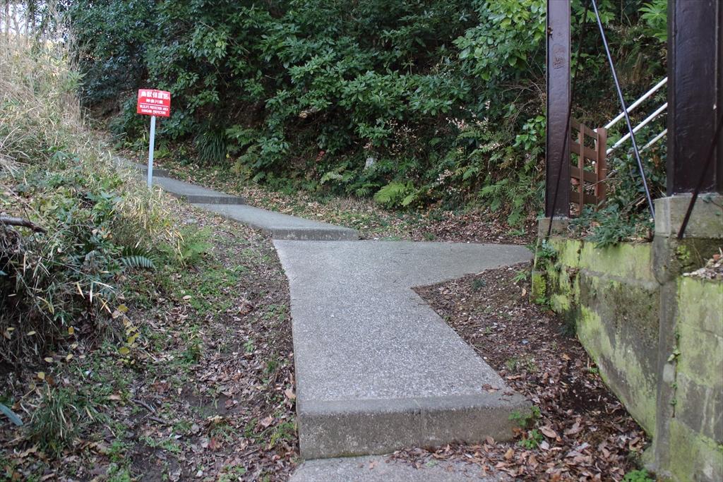 暫くは、整備された歩きやすい道が続く_5