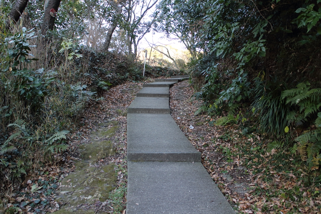 暫くは、整備された歩きやすい道が続く_6