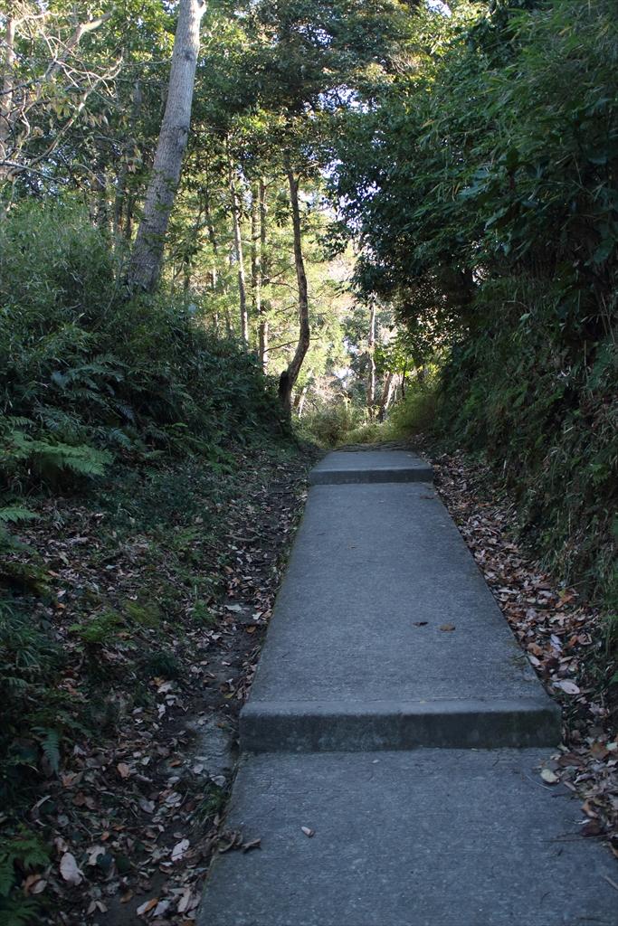 暫くは、整備された歩きやすい道が続く_8