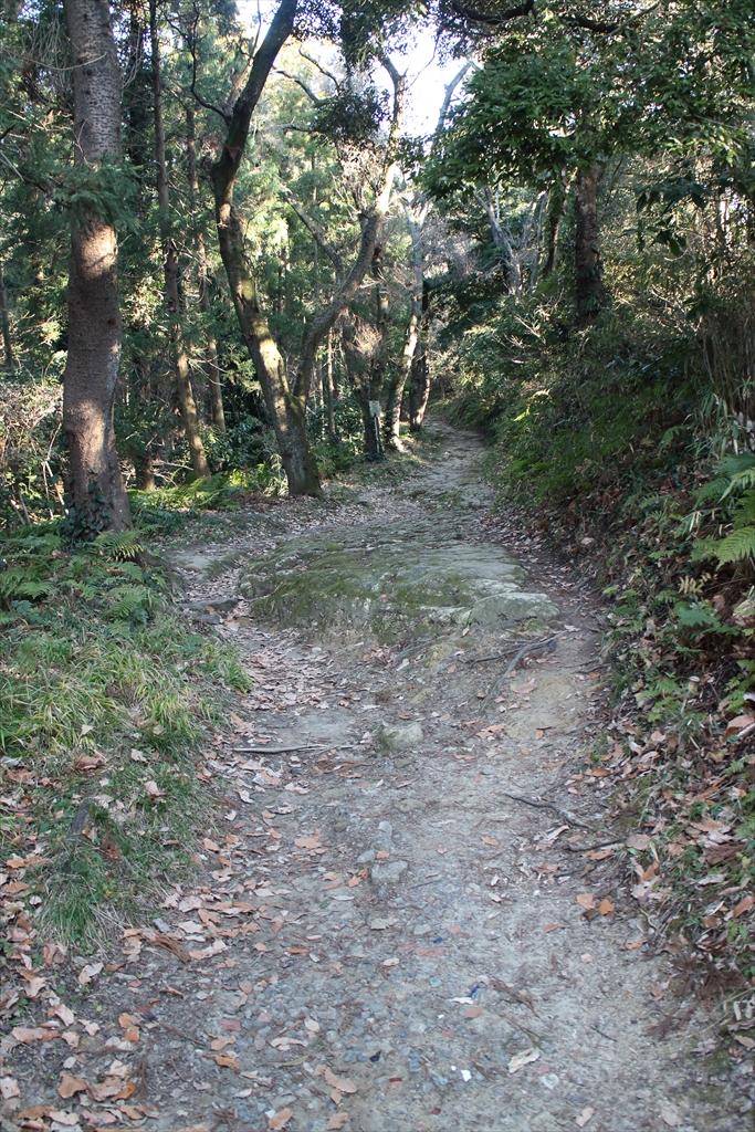 ここから路面が自然石の道に変わる_3