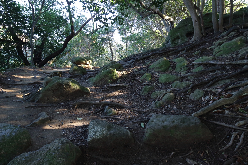 漸く、石の道でなく土の道になった_1
