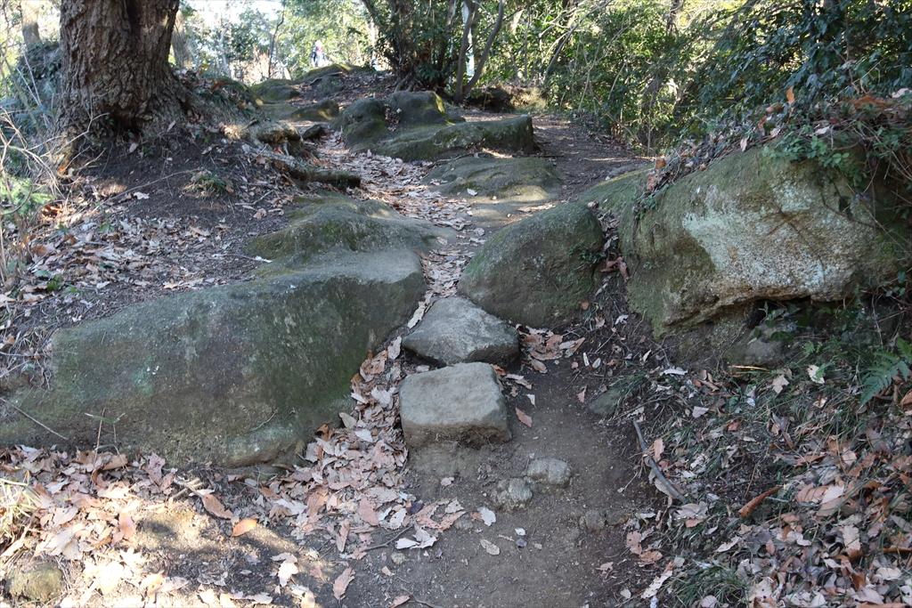 岩石の割合が高くなってきた_1