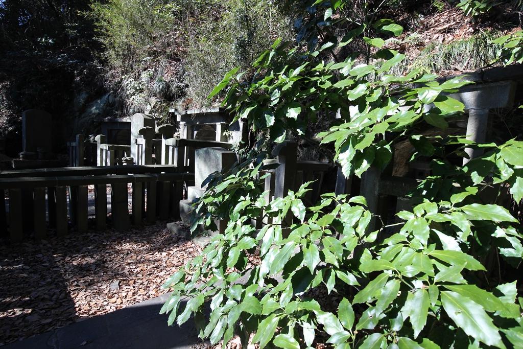 島津忠久の墓の端から見た様子