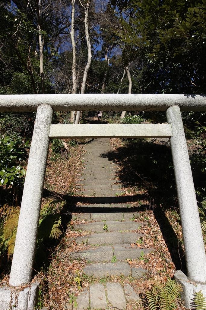 階段も別々_2