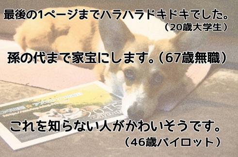20141230-3.jpg