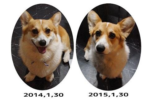 20150130-12.jpg