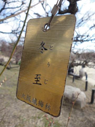 大阪城公園にて⑩