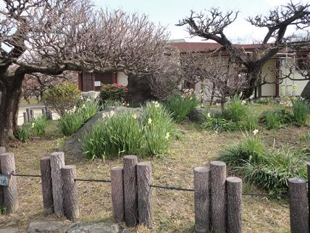 大阪城公園にて⑦