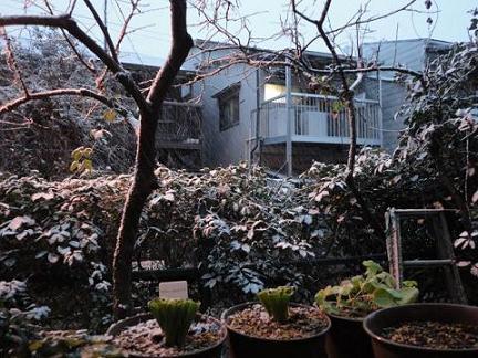 夕方から雪が①