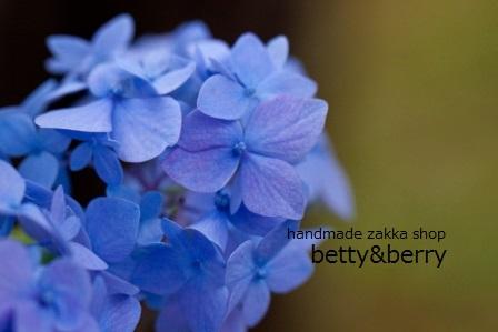 Flower,_Hydrangea__Shikizaki-Hime-Ajisai__-_Flickr_-_nekonomania_(2) (448x299)