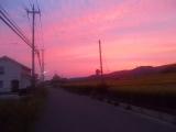 夕暮れ時の田舎道