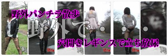blomaga003-2bannur2.jpg