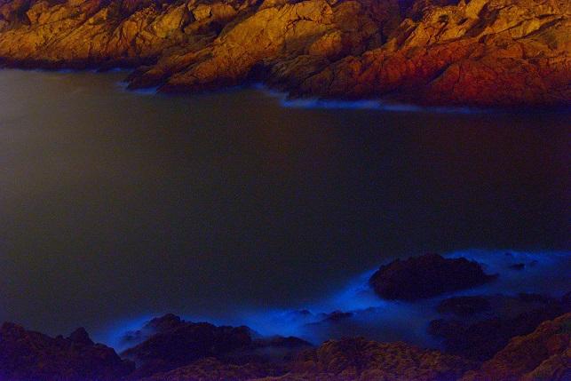 漁村の夜(2)