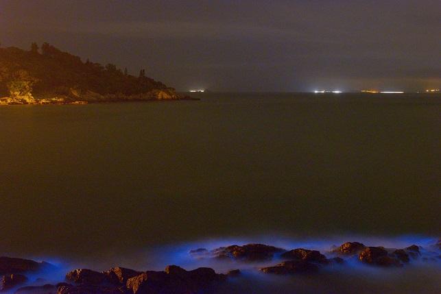 漁村の夜(1)