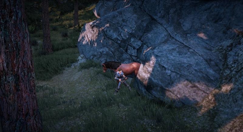 野生馬の捕獲ハジメマシタ