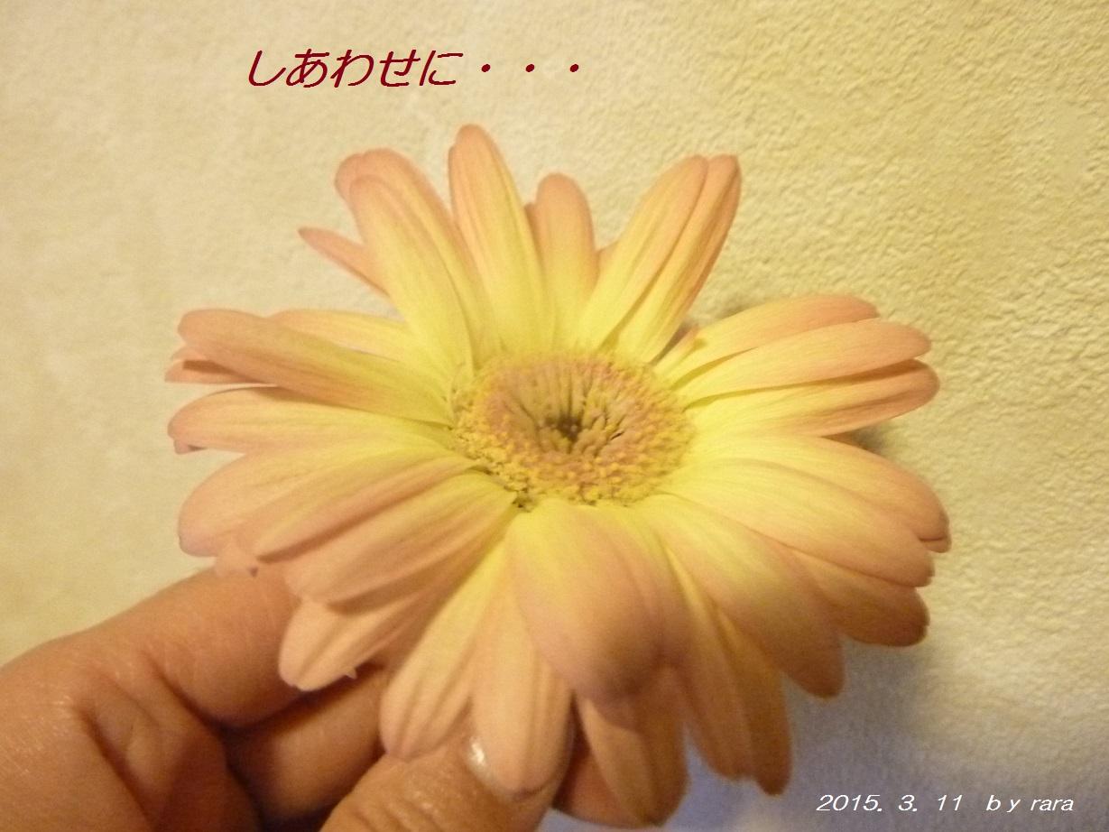 P1170159.jpg