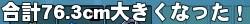 mabinogi_2015_03_26_003 (2)