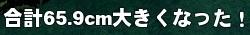 mabinogi_2015_03_26_014.jpg